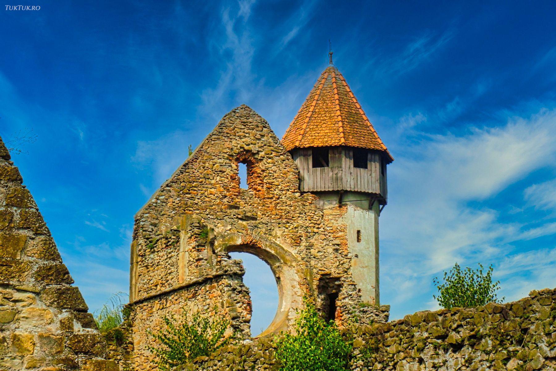 mananastirea cisterciana carta