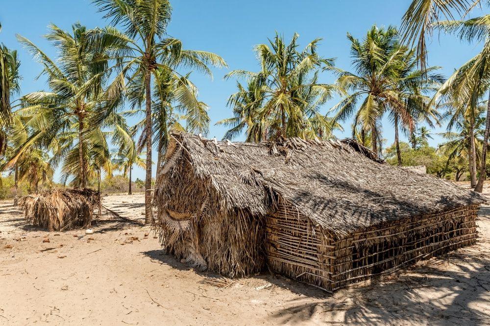 Insula Lamu